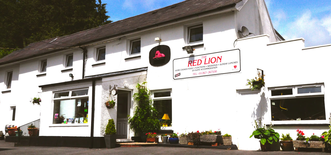 The Red Lion Llandyfaelog, Family Friendly With Great Food