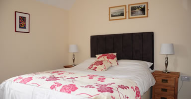 Bed and Breakfast Carmarthenshire at The Red Lion Llandyfaelog